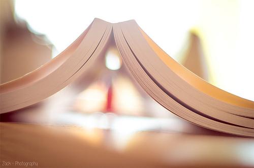 本読んでいる途中