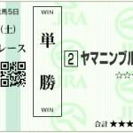 【予想】2015年3月28日中京9Rヤマニンブルジョン