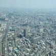東京の空から見た景色
