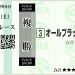 【予想】2016年2月13日京都12Rオールブラッシュ