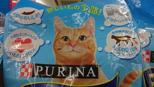 猫エサのパッケージねこ_6