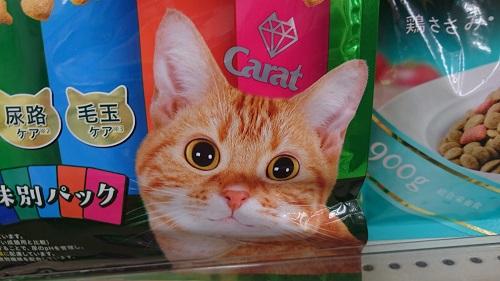 猫エサのパッケージねこ_2