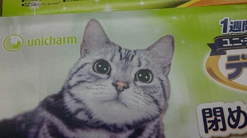 猫エサのパッケージねこ_7