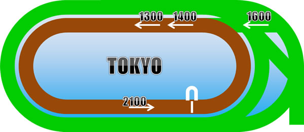東京ダートコース