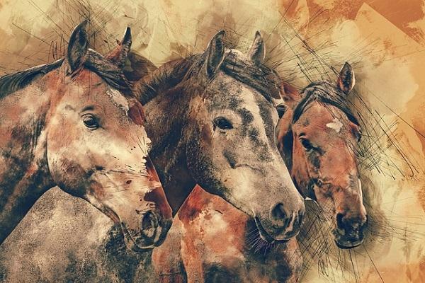 馬サラブレットの絵